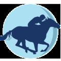 S.S. Lazio Equitazione